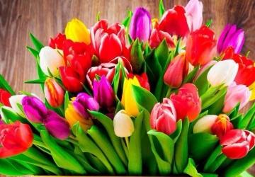 Поздравляем с праздником весны и цветов, с 8 марта!